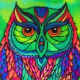 Ms. Owl