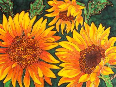 Brilliant Sunflowers