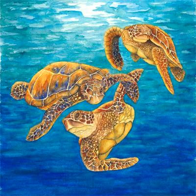 Dance of the Turtles