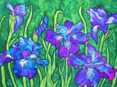 Iris in Blues
