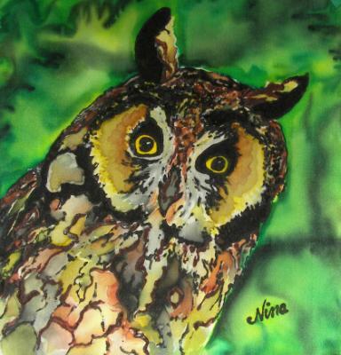 Long-eared Owl on Silk