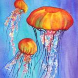 Colorful Jellies