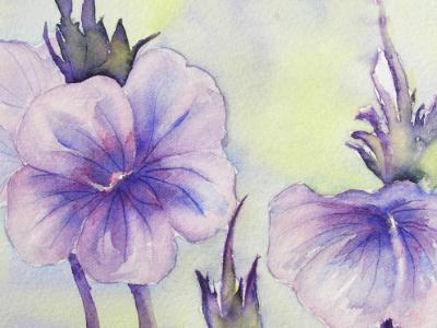 Spring Flowers in Purple
